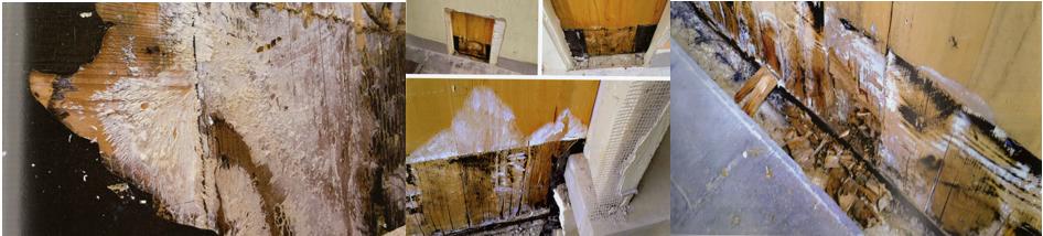 problemi case in legno